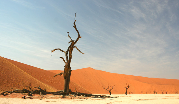 Self Drive Safaris in Namibia